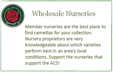 Wholesale Nurseries
