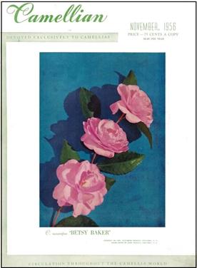 Camellian - 1950-1963