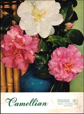 Camellian - 1953