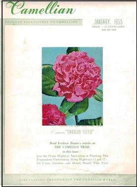 Camellian - 1955