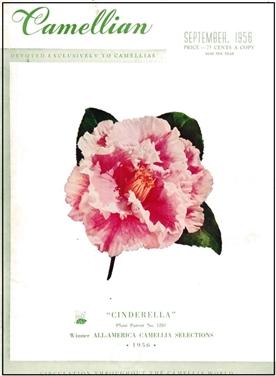 Camellian - 1956
