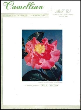 Camellian - 1957