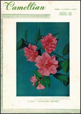 Camellian - 1961