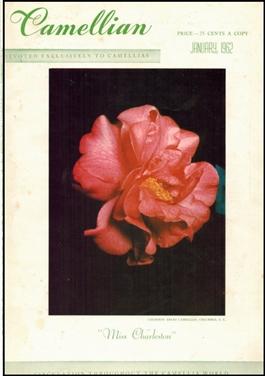 Camellian - 1962