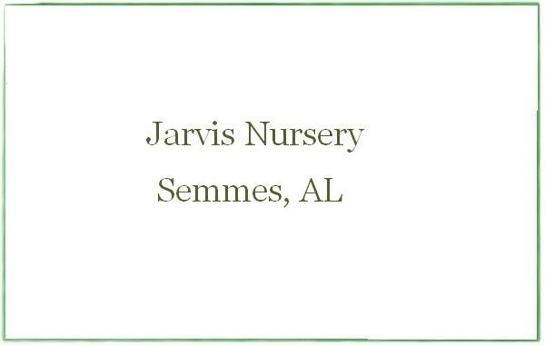 Jarvis Nursery