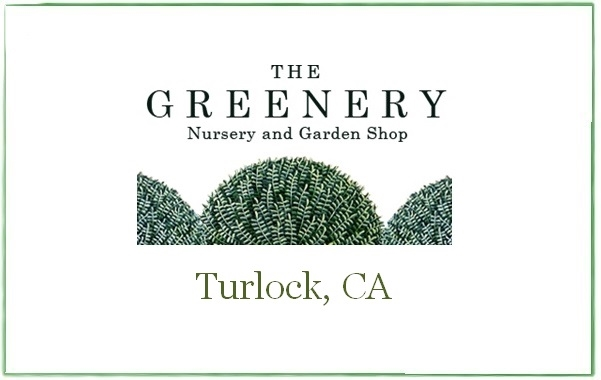 The Greenery Nursery and Garden Shop