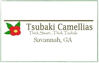 Tsubaki Camellias, Inc.