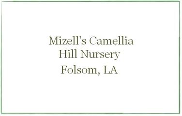 Mizell's Camellia Hill Nursery