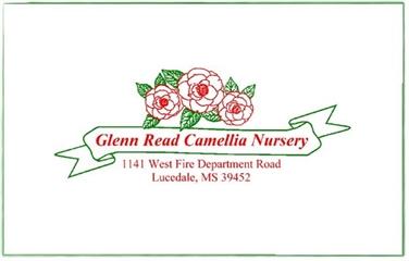 Glenn Read Camellia Nursery