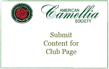 Submit Content for Club Page