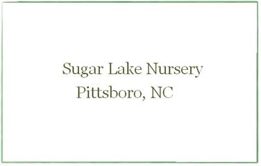 Sugar Lake Nursery