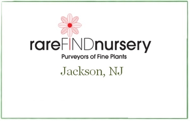 RareFind Nursery
