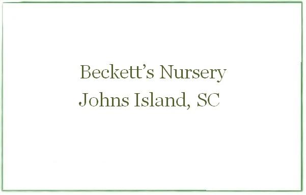 Beckett's Nursery