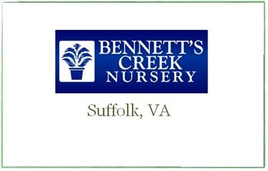 Bennett's Creek Nursery