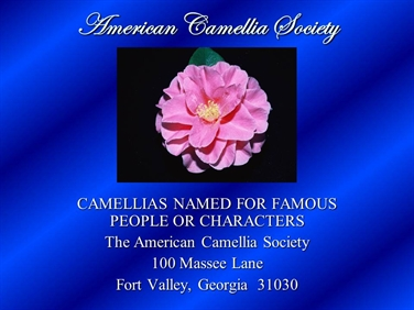 Camellias Named for Famous People or Characters
