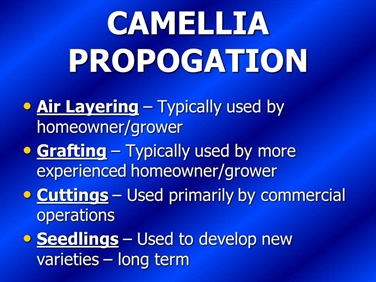Camellia Propagation - Air layering