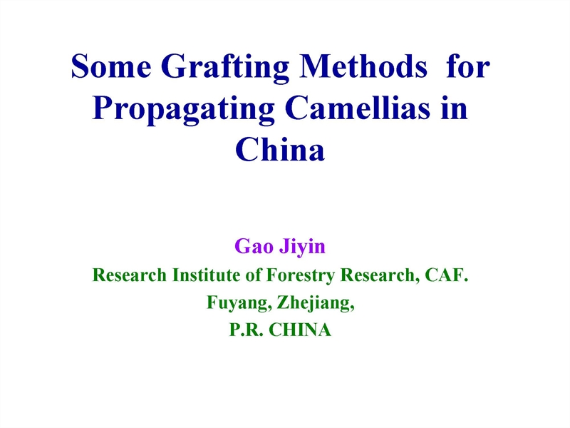 Some Grafting Methods for Propagating Camellias in China