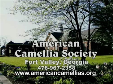 Massee Lane and the American Camellia Society Video