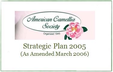 ACS Stragetic Plan