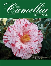 Camellia Journal June 2013 - August 2013