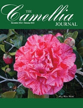 Camellia Journal December 2012 - February 2013