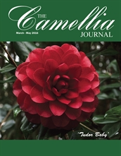 Camellia Journal March  - May 2016