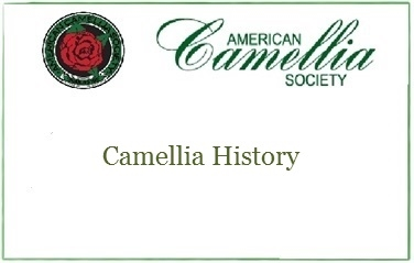 History of Camellias