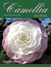 Camellia Journal December 2016 - February 2017
