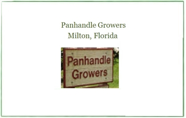 Panhandle Growers Inc.