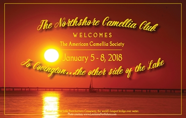 ACS National Convention January 5-8, 2018