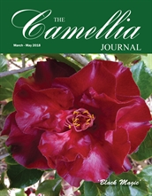 Camellia Journal March - May 2018