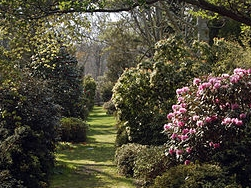 The Polly Hill Arboretum