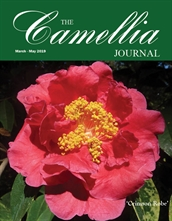Camellia Journal March - May 2019