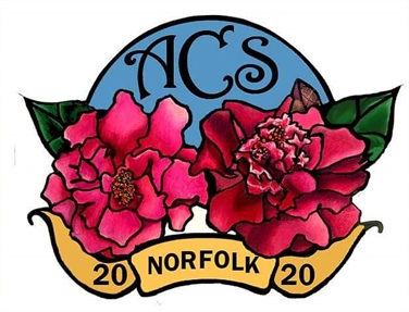 ACS National Convention March 13-17, 2020 Norfolk, Virginia