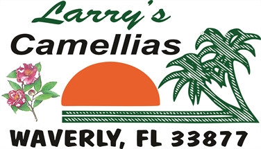 Larry's Camellias