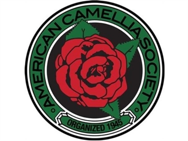 CAMELLIA CULTIVARS REGISTERED IN 2020