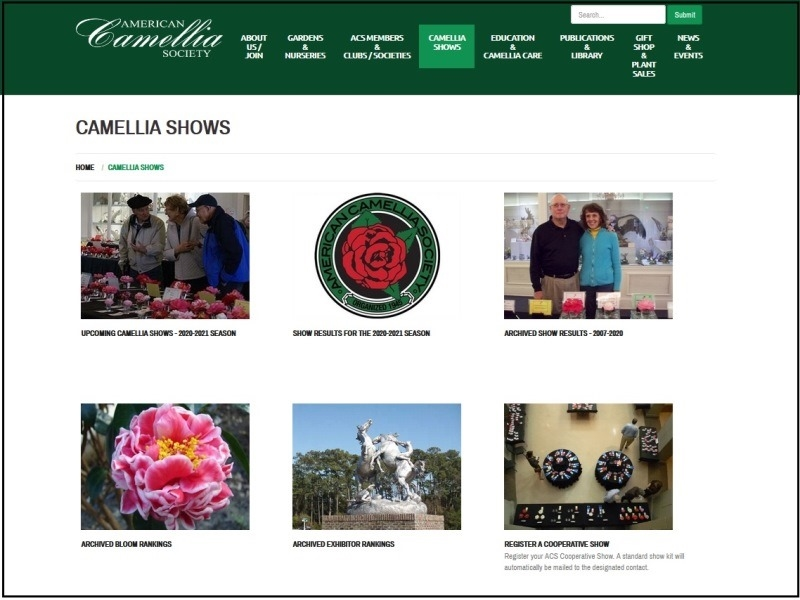 Use of the ACS Website - Camellia Shows
