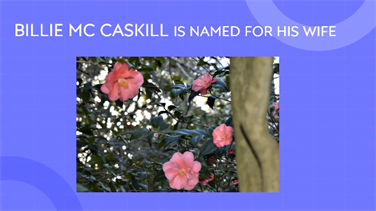 Remembering Vern McCaskill