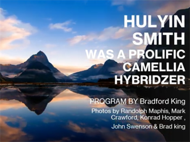 Hulyn Smith - Hybridizer