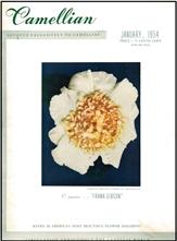 Camellian - Vol. V, No. 1 - January 1954