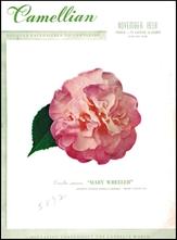Camellian - Vol. IX, No. 4 - November 1958
