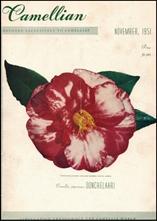 Camellian - Vol. II, No. 3 - November 1951