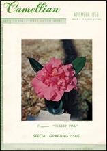 Camellian - Vol. X, No. 4 - November 1959