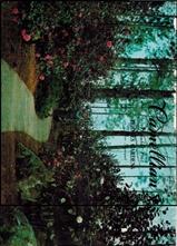Camellian - Vol. XII, No. 4 - November 1961