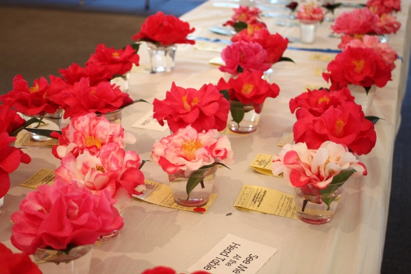 Southeast Alabama Camellia Society