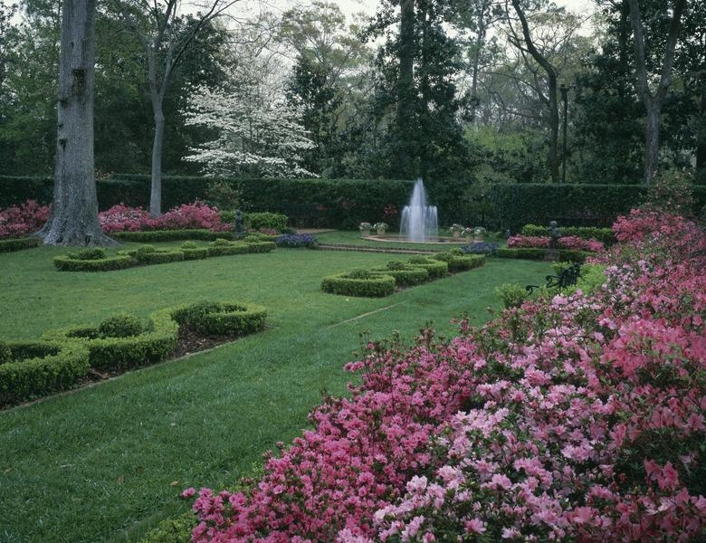 Bayou Bend Collection & Garden
