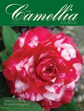 Camellia Journal December 2009-February 2010