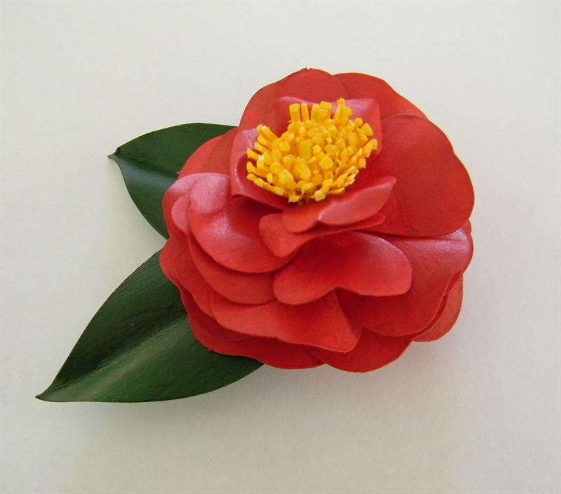 Red Japonica Brooch