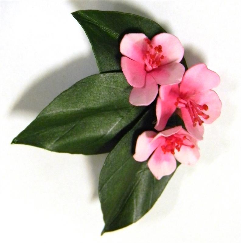 Peach Blossom Brooch