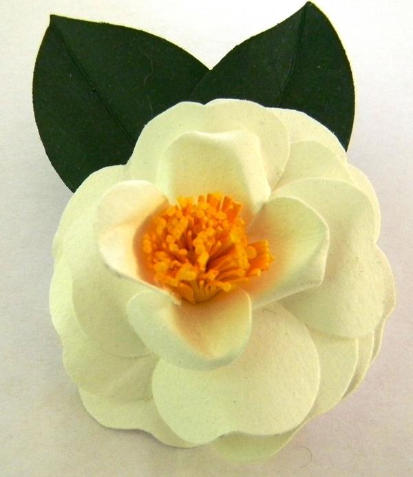White Camellia Japonica Pin